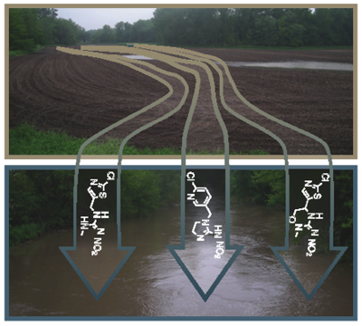 Schematic of transport of neonicotinoid insecticides from field to stream