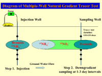 Multiple-well natural gradient tracer tests involve injecting a tracer in an upgradient well and then monitoring downgradient wells for the tracer