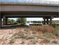 One of the sampling sites from an investigation on the temporal occurrence and persistence of emerging contaminants in an effluent-dependent stream (Site 3, mile 6 on the study reach, Santa Cruz River, AZ)