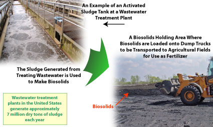 Diagram with an activated sludge tank (upper left) and a holding area for biosolids (lower right)