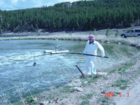 USGS scientist using a long sampling device to collect a sample of liquid from a municipal wastewater holding pond