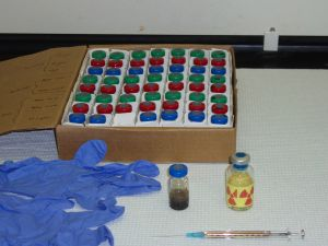 Glass serum vials used to construct microcosms for laboratory biodegradation experiments