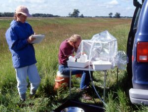 USGS scientists sampling ground water in protective shroud that helps prevent sample contamination