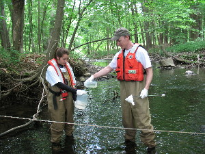 USGS hydrologic technicians collect a stream sample from Hallocks Mill Brook downstream of the outfall of one of the wastewater treatment plants investigated.