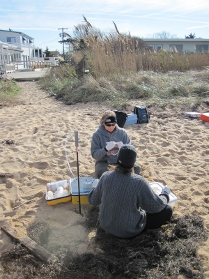 USGS sceintists sampling groundwater