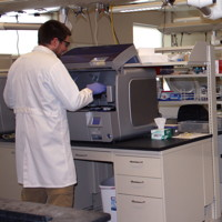 Scientists analyzing samples for viral pathogens
