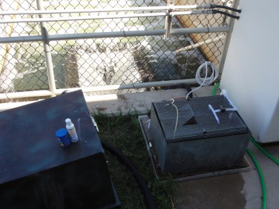 Field exposure setup at a wastewater treatment plant