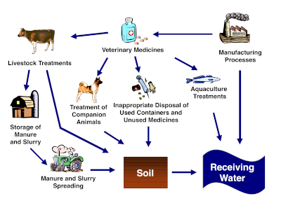 Potential pathways for veterinary medicines in soil and water