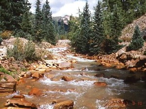 Cement Creek, Colorado, is the site of USGS investigations of the fate of acid mine drainage