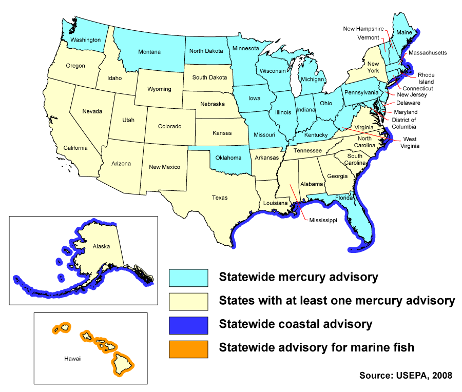Mercury in aquatic ecosystems photo gallery all photos for Which fish has the most mercury
