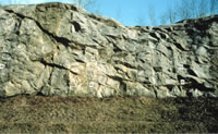 Outcrop of a fractured rock aquifer where fracture characteristics were measured.