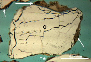 Photomicrograph of a polished thin section showing a cross-sectional view of a quartz sand grain