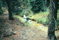 USGS scientist collecting a water sample from St. Kevin Gulch, Colo.