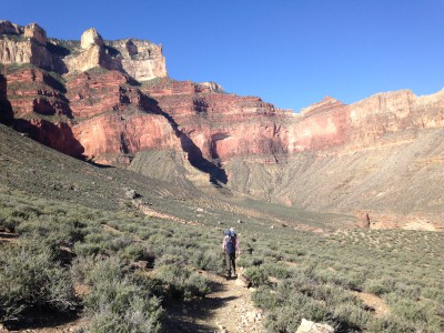 Scientist walking in Grand Canyon, Arizona